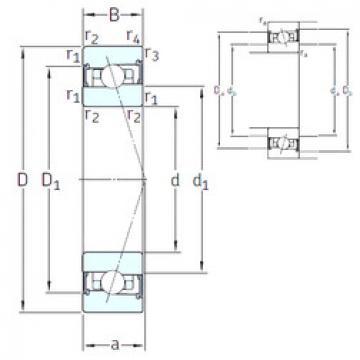 Rodamiento HX110 /S/NS 7CE1 SNFA