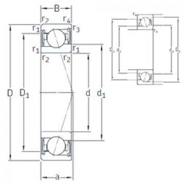 Rodamiento VEB 50 /S/NS 7CE1 SNFA